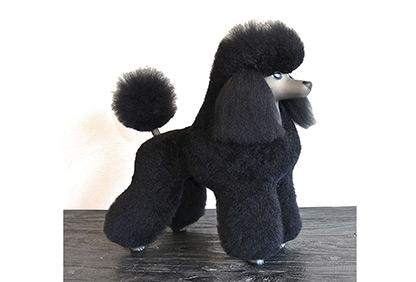 Lee más sobre el artículo PRÁCTICAS de peluquería canina EN CASA con un perro ¿POSTIZO?