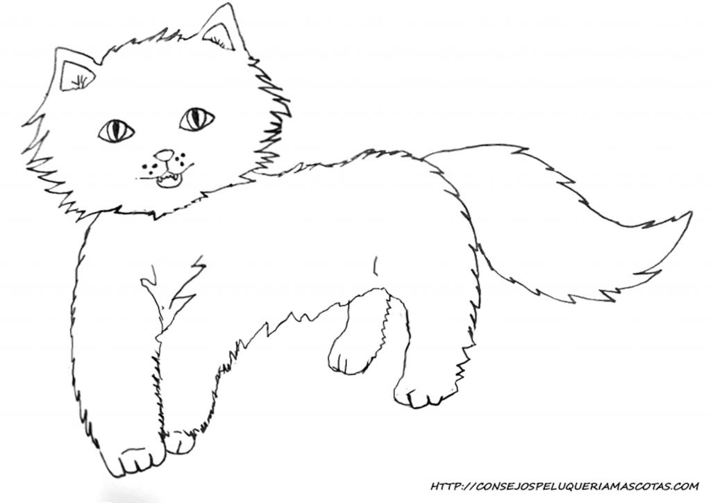 dibujo de un gato persa infantil