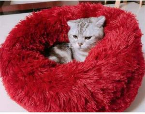 cama de pelo para gato de color rojo con gato dentro de color gris