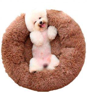 Lee más sobre el artículo 🐕 MEJORES camas para mascotas de amazon 【2021】