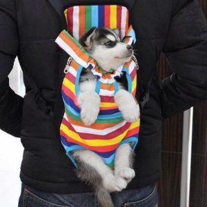 cachorro de perro en mochila portatil