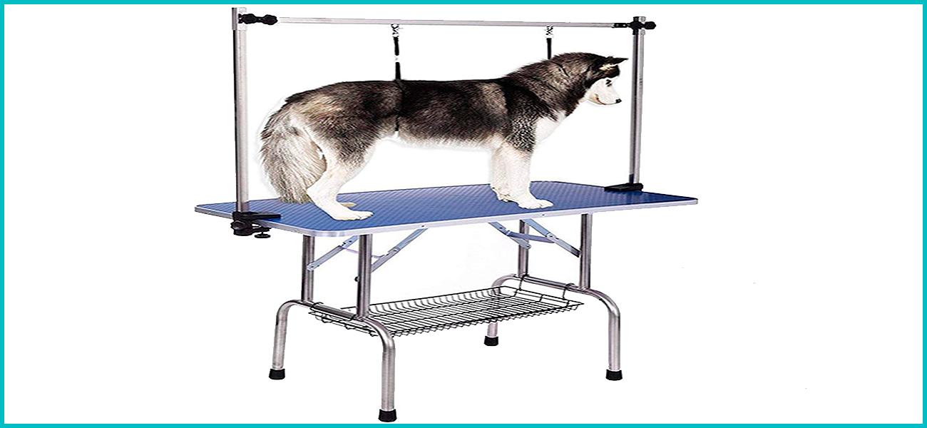 mesa de peluqueria para perro grande, husky siberiano atado a mesa
