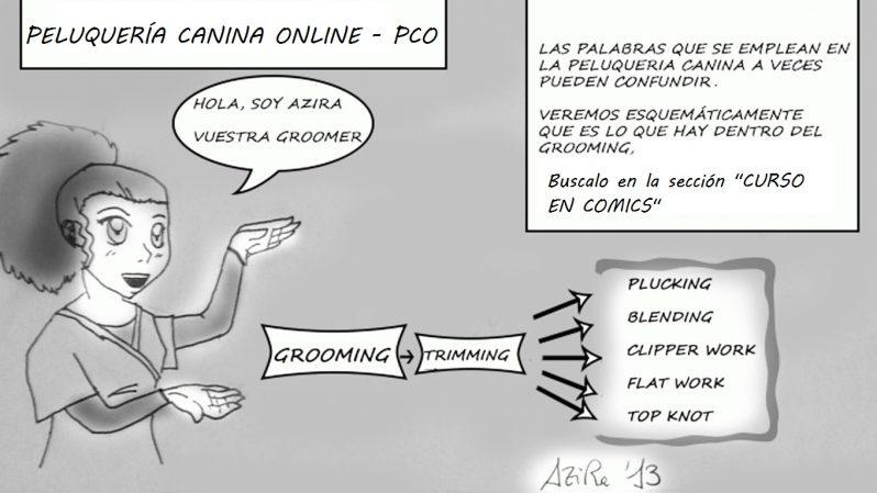 ▷ Peluqueria Canina Online - Los mejores recursos Gratis 2018 👍