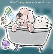 dibujo de perro en la bañera