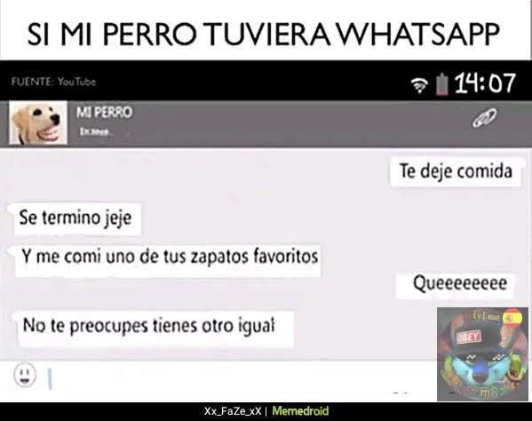 perros con whatsapp