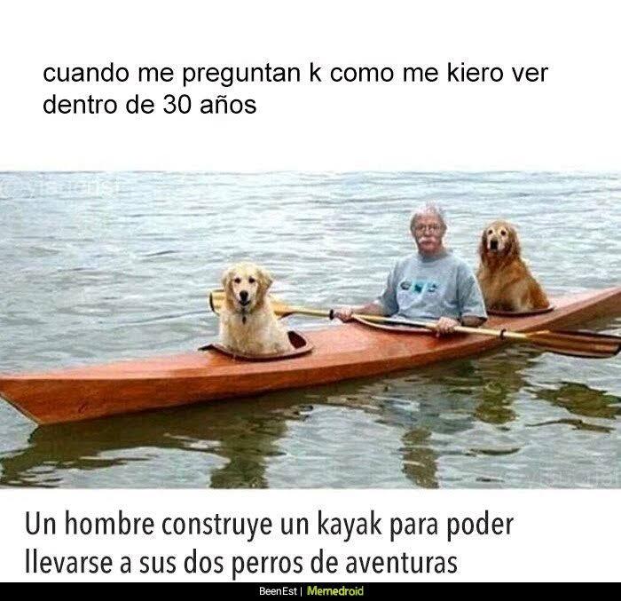 kayak con perros