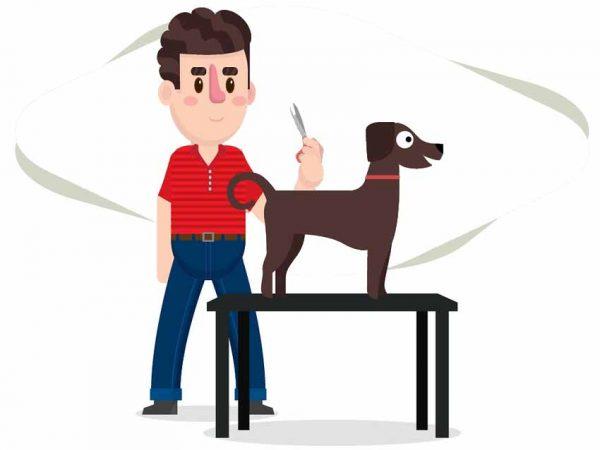 dibujo perro mesa peluquero