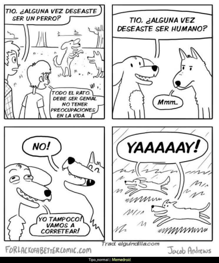 deseos humanos perros