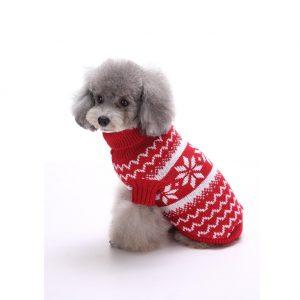 perro caniche gris con jersey de navidad visto desde atras