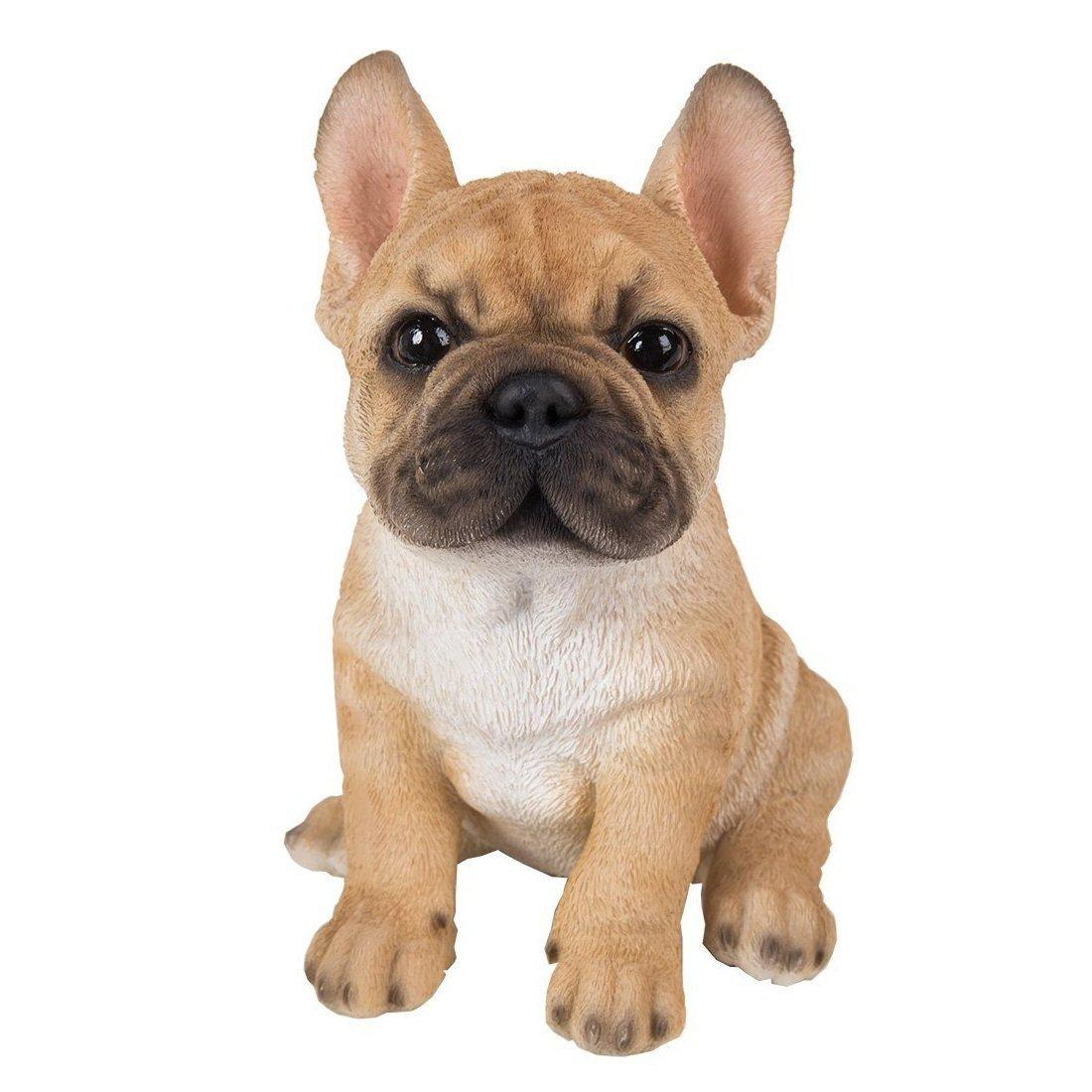bulldog frances sentado de color marron