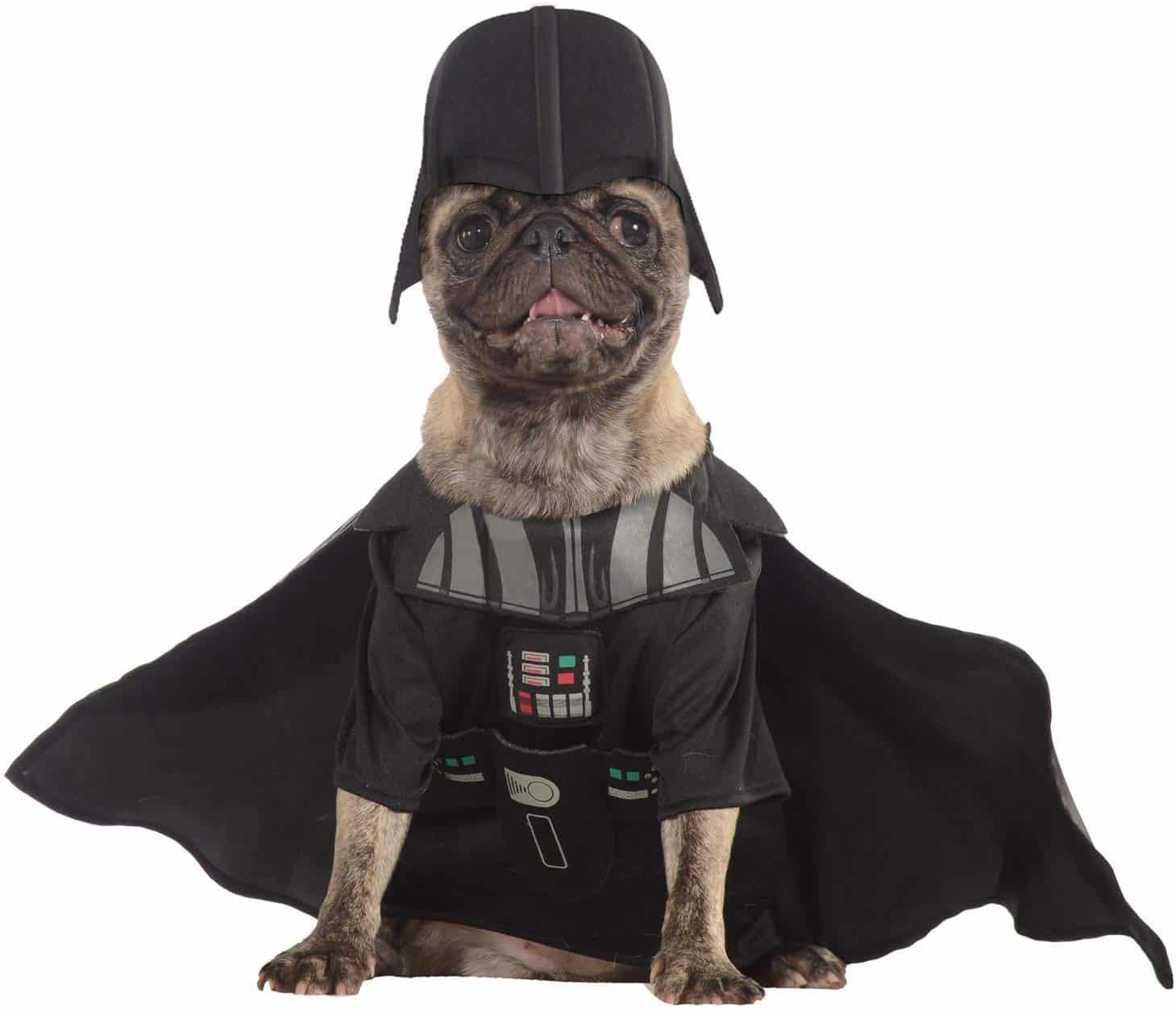 pug carlino con disfraz de star wars