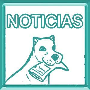 noticias de perros y mascotas