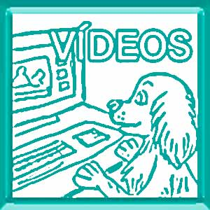 Videos para aprender peluquería canina