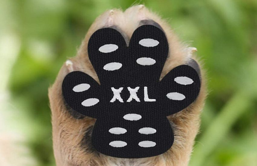 protector pegatina de almohadilla de perro talla xxl